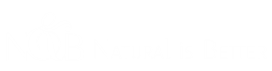 N & B Logo